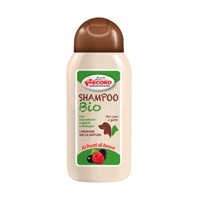 RECORD ΣΑΜΠΟΥΑΝ BIO FOREST FRUITS 250ml